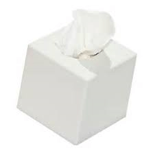 Facial Tissue Cube Box
